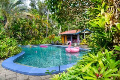Pink Flamingo Resort